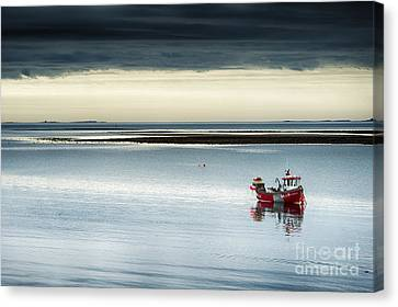 Calm Before The Storm  Canvas Print by Tim Gainey