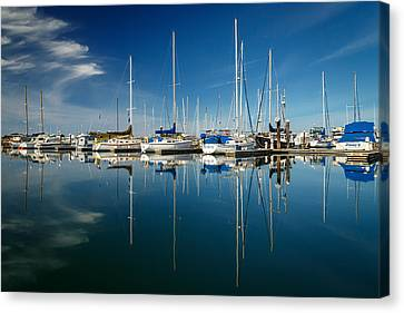 Calm Masts Canvas Print