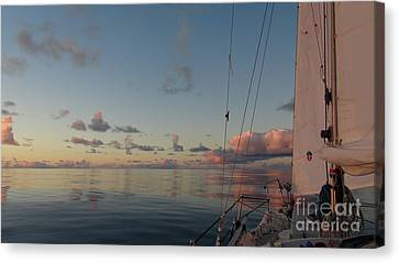 Canvas Print featuring the photograph Calm Seas by Laura  Wong-Rose