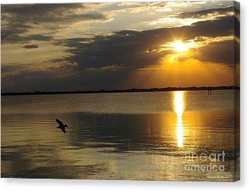 Calm Sunset Canvas Print by Tannis  Baldwin