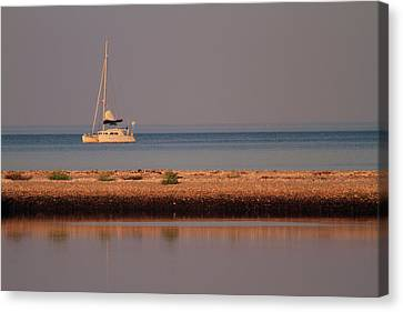 Calm Waters Canvas Print by Karol Livote