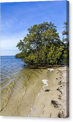 Calm Waters On The Gulf Canvas Print by Marvin Spates