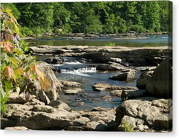 Canvas Print featuring the photograph Calm Waters Wat 223 by G L Sarti