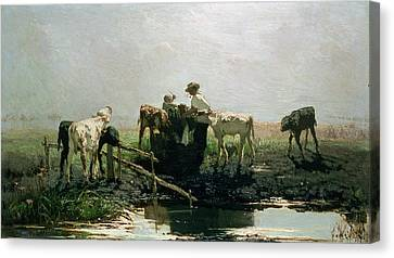 Feeding Canvas Print - Calves At A Pond, 1863 by Willem Maris