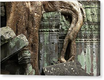 Cambodia, Siem Reap, Angkor, Ta Prohm Canvas Print by Tips Images