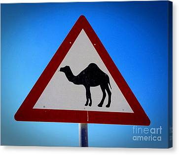 Canvas Print featuring the photograph Camel Warning Road Sign by Henry Kowalski