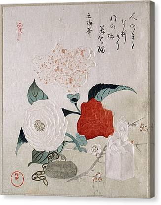 Camellia Flowers A Netsuke And A Seal Canvas Print by Kubo Shunman