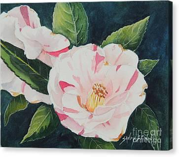 Camellia ...sold  Canvas Print