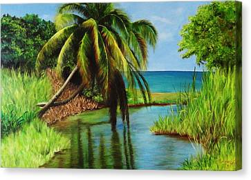 Camino Del Agua Canvas Print by Migdalia Bahamundi