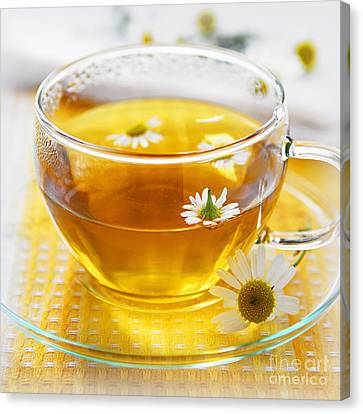 Chamomile Tea Canvas Print