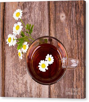 Camomile Tea Canvas Print by Jane Rix