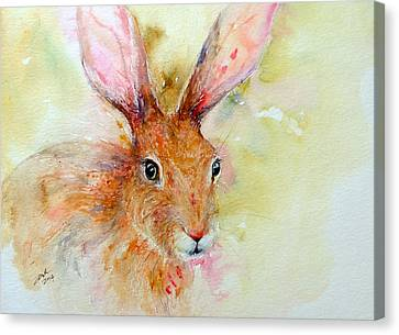Camouflage Brown Hare Canvas Print
