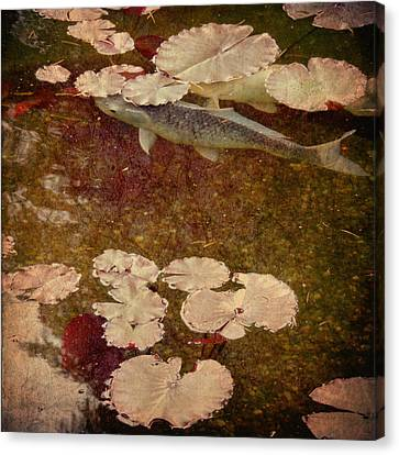 Canvas Print featuring the photograph Camouflage by Sally Banfill