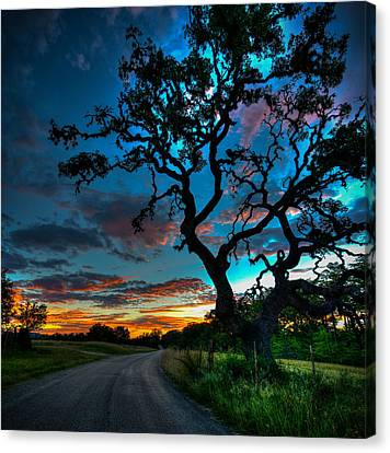 Camp Verde Sunrise Canvas Print by Allen Biedrzycki