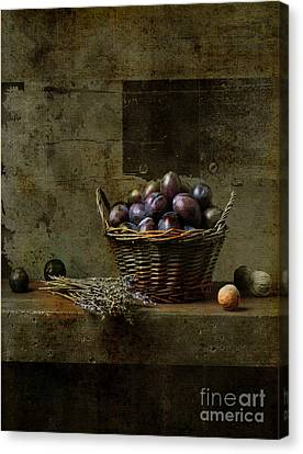 Purple Grapes Canvas Print - Campagnard - Rustic Still Life - S03at01 by Variance Collections