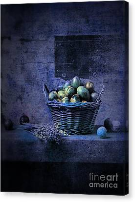 Purple Grapes Canvas Print - Campagnard - Rustic Still Life - S04ct01 by Variance Collections
