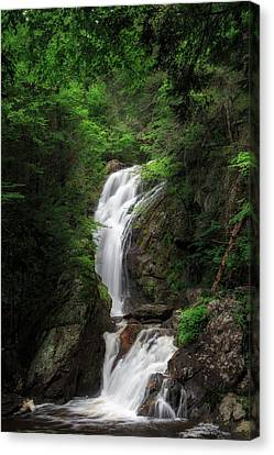 Campbell Falls Canvas Print by Bill Wakeley
