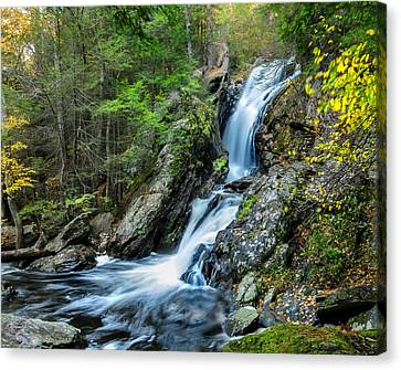 Campbell Falls - Power And Beauty Canvas Print by Thomas Schoeller