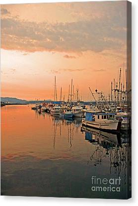Campbell River Marina Canvas Print by Nancy Harrison