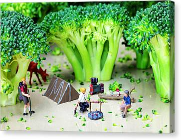 Camping Among Broccoli Jungles Miniature Art Canvas Print by Paul Ge