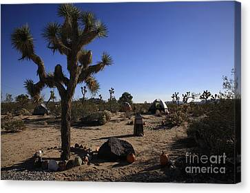 Camping In The Desert Canvas Print by Nina Prommer
