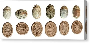 Canaanite Scarab Seals Canvas Print by Photostock-israel