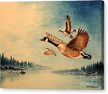 Canada Geese Canvas Print by Bill Holkham