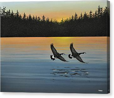 Canada Geese Canvas Print by Kenneth M  Kirsch
