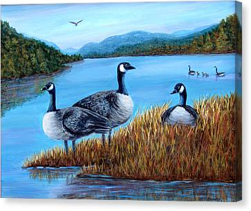 Canada Geese - Lake Lure Canvas Print by Fran Brooks
