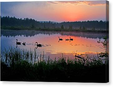 Canada Geese Sunrise Canvas Print by Donna Doherty