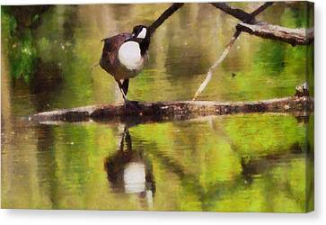 Canada Goose Reflection Canvas Print by Dan Sproul