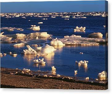 Canada, Manitoba, Churchill, Ice Floe Canvas Print