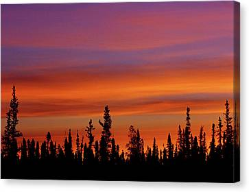 Canada, Northwest Territories, Ft Canvas Print by Jaynes Gallery