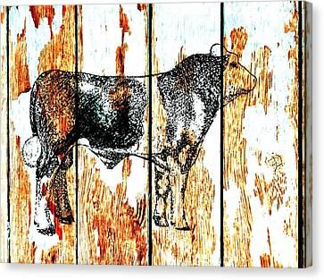 Canvas Print featuring the photograph Canadian Champion Simmental 2 by Larry Campbell