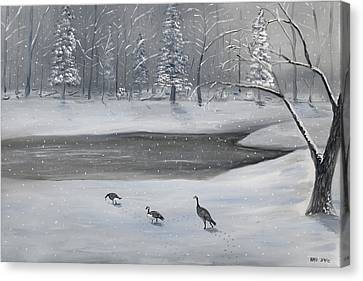 Canadian Geese In Winter Canvas Print by Brandon Hebb