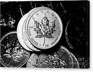 Canadian One Ounce Maple Leaf Silver Coins Canvas Print by Joe Fox