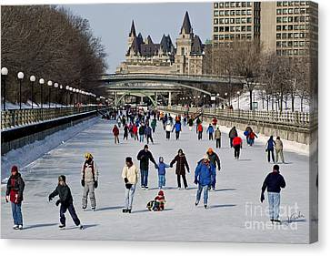 Canal Skate I Canvas Print