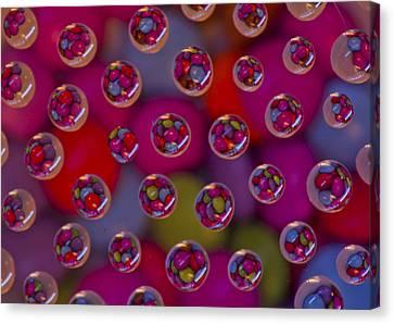 Candy Drops Canvas Print by Brendan Quinn