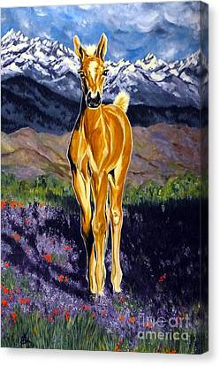 Candy Rocky Mountain Palomino Colt Canvas Print by Jackie Carpenter