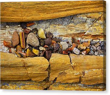 Petrified Forest Arizona Canvas Print - Candy Store by Skip Hunt
