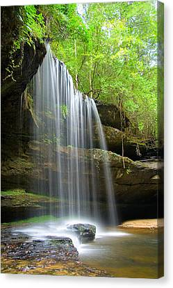 Caney Creek Falls Canvas Print by Scott Moore