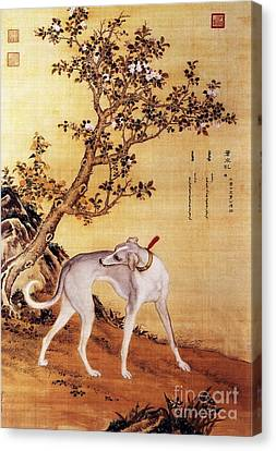 Greyhound Canvas Print - Cangshuiqiu - Royal Dog by Pg Reproductions