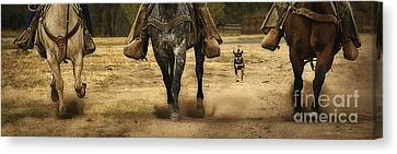 Canine Verses Equine Canvas Print by Priscilla Burgers