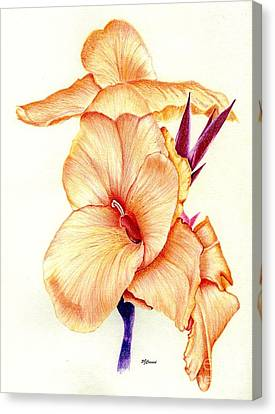 Canna Lilly Canvas Print by Pamela Cawood