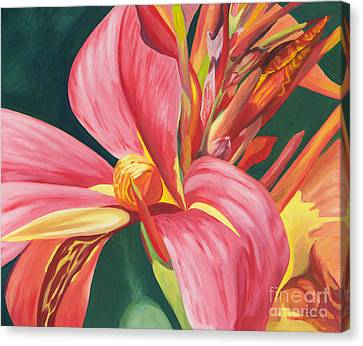 Canna Lily 2 Canvas Print by Annette M Stevenson