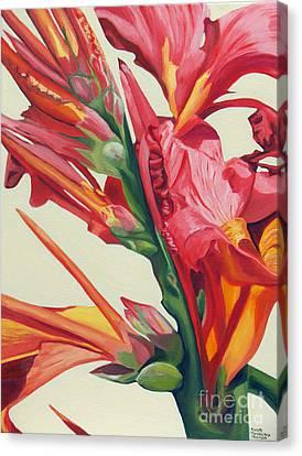 Canna Lily Canvas Print by Annette M Stevenson