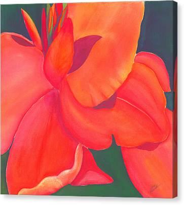Canna Lily Canvas Print by Debbra Nodwell-Bender
