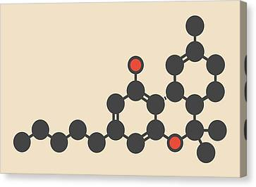 Cannabis Drug Molecule Canvas Print