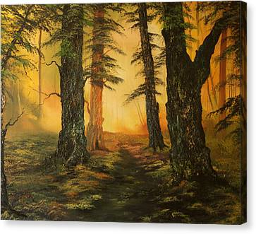 Cannock Chase Canvas Print - Cannock Chase Forest In Sunlight by Jean Walker