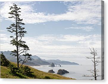 Cannon Beach At Ecola State Park Canvas Print by David Gn